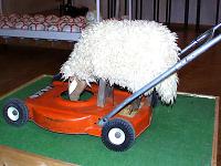 Schafer Rasenmäher