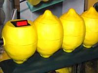 Zitronen-Steckdosen